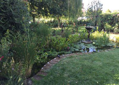 Un giardino in evoluzione