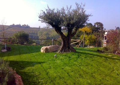 """""""Un giardino sui colli"""""""